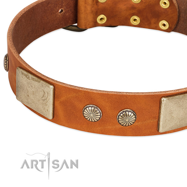 Corrosion proof embellishments on natural genuine leather dog collar for your doggie