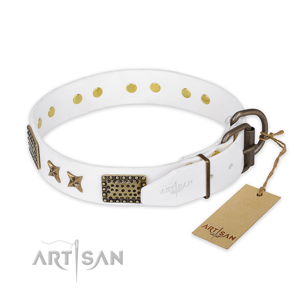 Strong traditional buckle on leather collar for your beautiful canine
