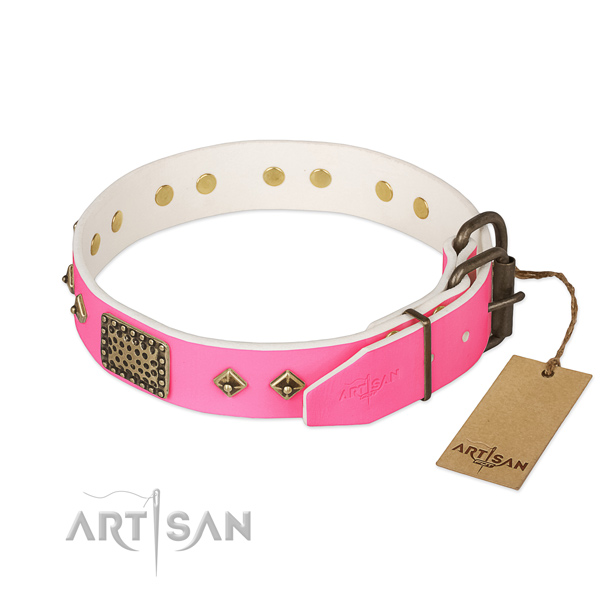 Corrosion proof decorations on comfy wearing dog collar