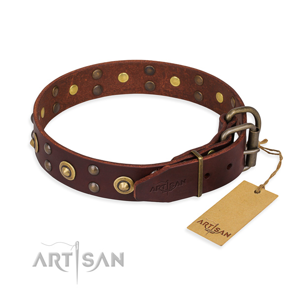 Strong buckle on leather collar for your beautiful four-legged friend