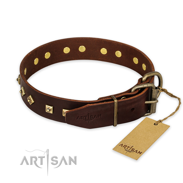 Corrosion resistant fittings on full grain natural leather collar for everyday walking your canine