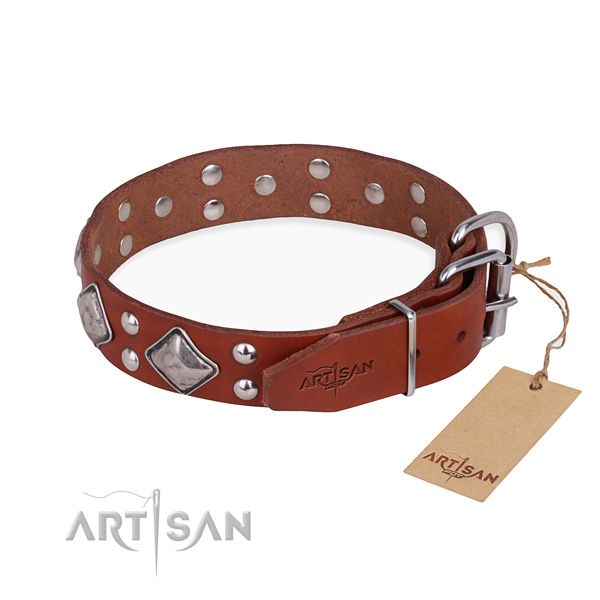 Natural leather dog collar with remarkable durable embellishments