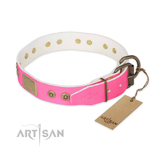 Rust-proof decorations on daily use dog collar