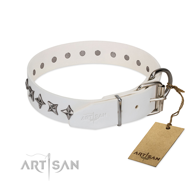 Basic training adorned dog collar of quality full grain genuine leather