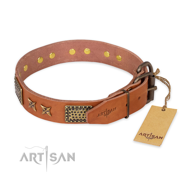 Corrosion proof D-ring on genuine leather collar for your beautiful dog