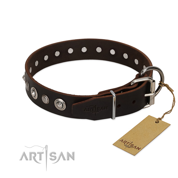 Quality full grain natural leather dog collar with stunning adornments