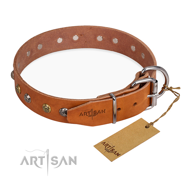 Full grain leather dog collar with unique reliable adornments