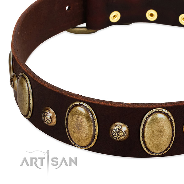 Full grain natural leather dog collar with exquisite adornments