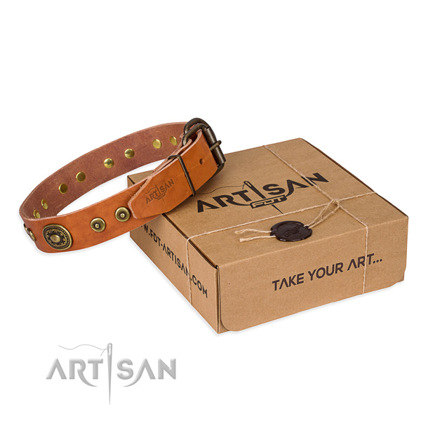 Leather dog collar made of reliable material with strong buckle