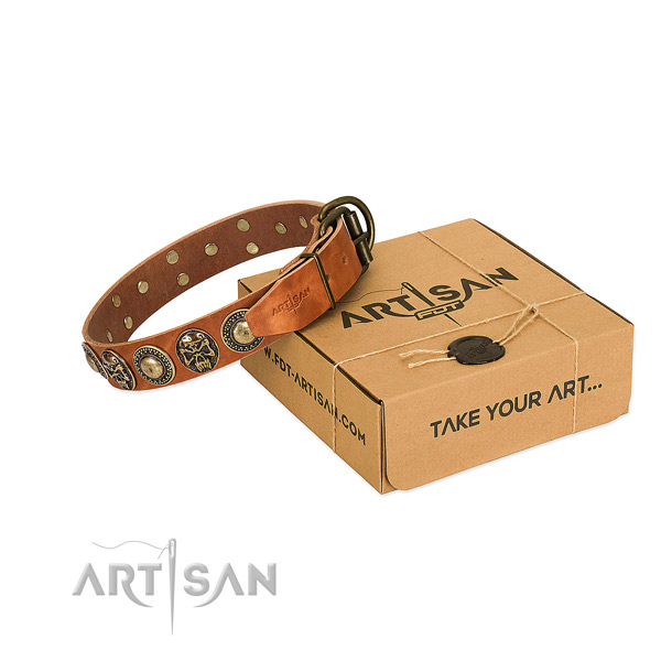 Durable adornments on dog collar for stylish walking