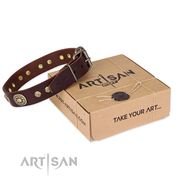 Durable D-ring on full grain natural leather dog collar for daily walking