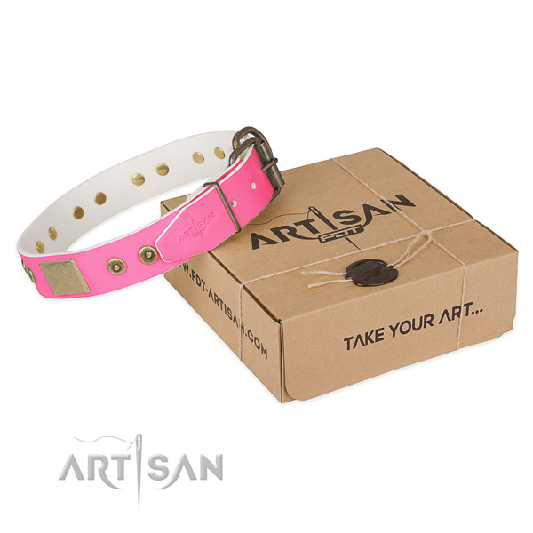 Corrosion proof adornments on dog collar for handy use