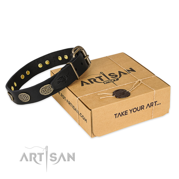 Strong buckle on full grain natural leather collar for your impressive canine