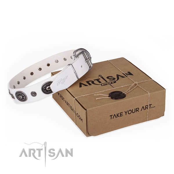 Soft full grain leather dog collar crafted for handy use
