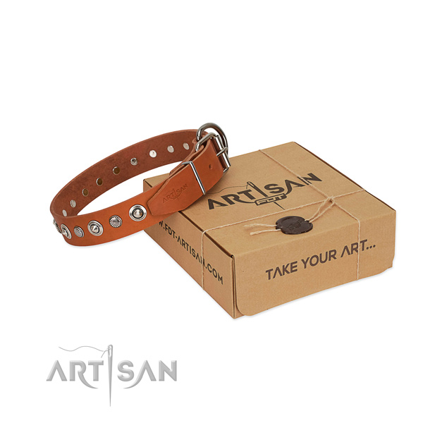 Strong full grain natural leather dog collar with stylish embellishments