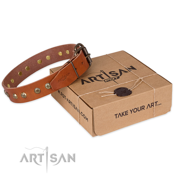 Corrosion proof fittings on genuine leather collar for your lovely pet