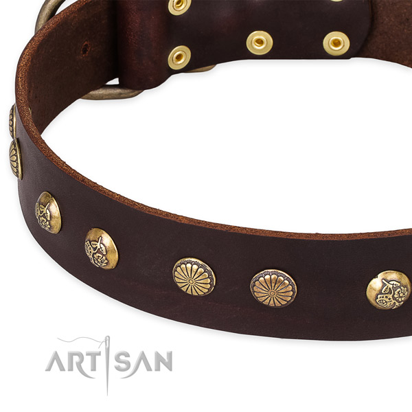 Natural genuine leather collar with reliable fittings for your attractive pet