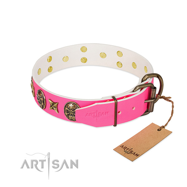 Reliable traditional buckle on leather collar for walking your four-legged friend