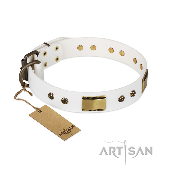 Fashionable leather collar for your canine