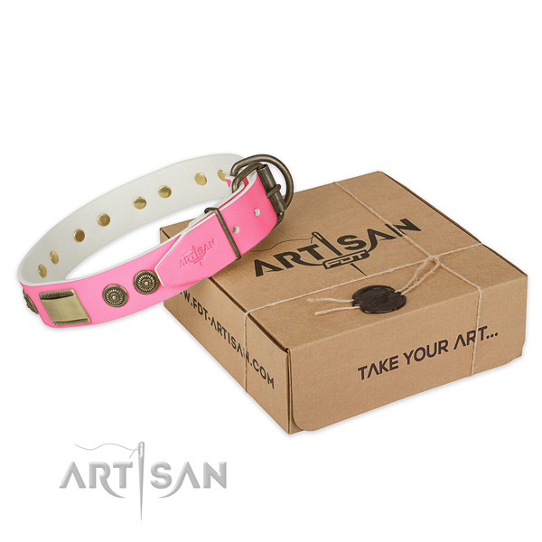 Rust resistant decorations on dog collar for daily use