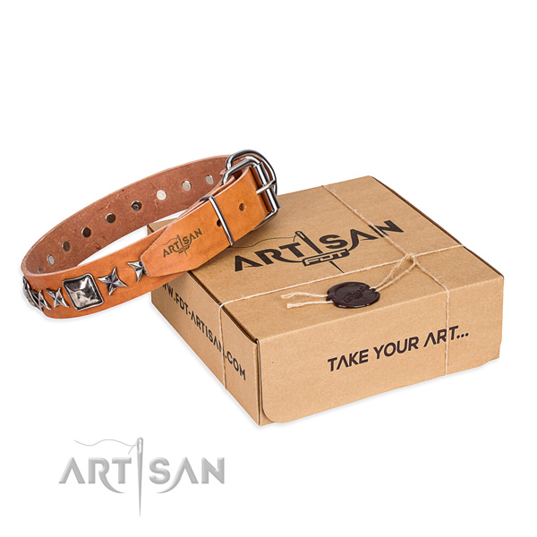 Everyday use full grain genuine leather dog collar with studs