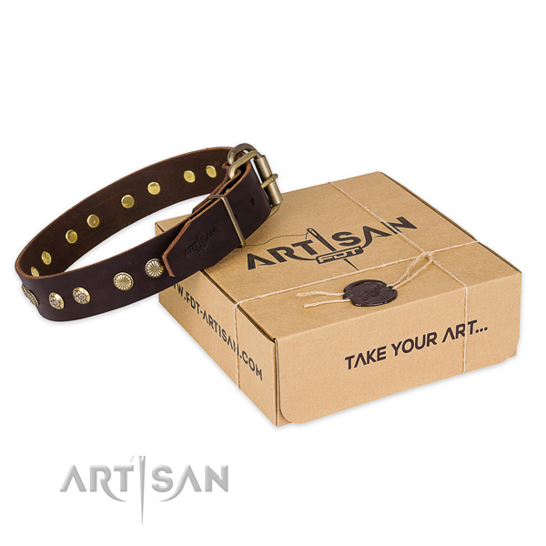 Durable traditional buckle on full grain natural leather collar for your lovely four-legged friend