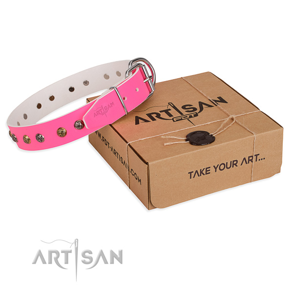 Handy use dog collar with Significant durable adornments
