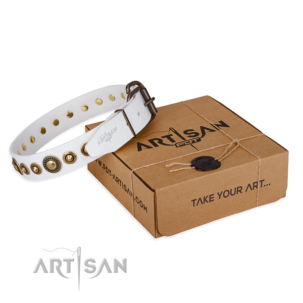 Best quality leather dog collar created for comfy wearing