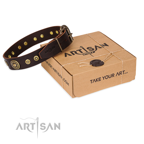 Full grain leather dog collar made of gentle to touch material with reliable buckle
