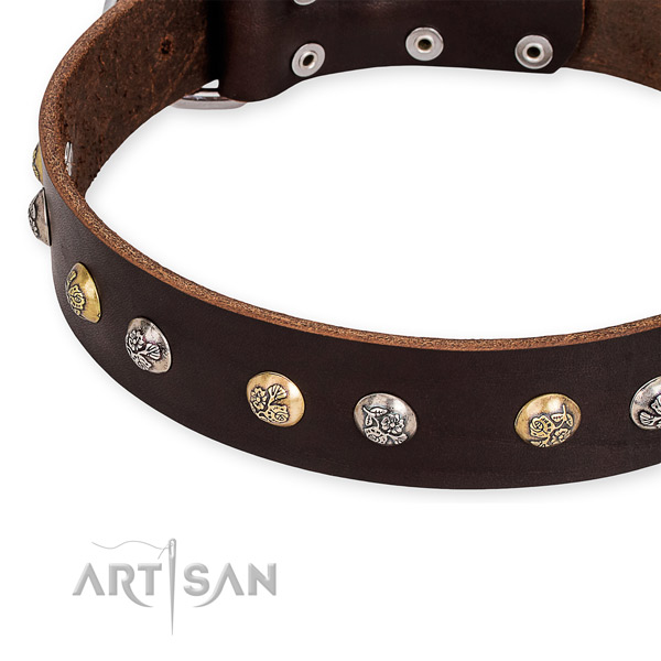 Natural genuine leather dog collar with extraordinary strong adornments