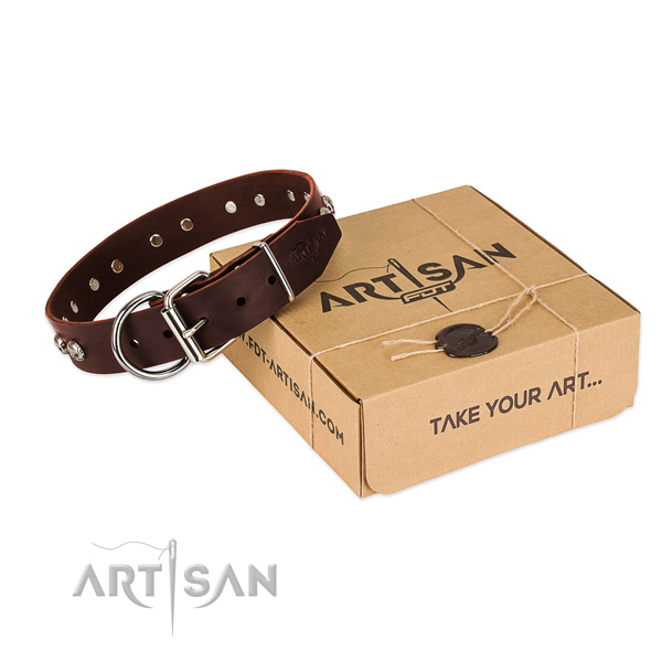Rust resistant buckle on dog collar for comfortable wearing
