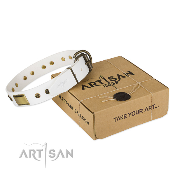 Inimitable full grain leather collar for your impressive dog