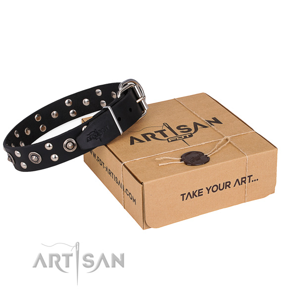 Stylish walking dog collar with Inimitable reliable embellishments
