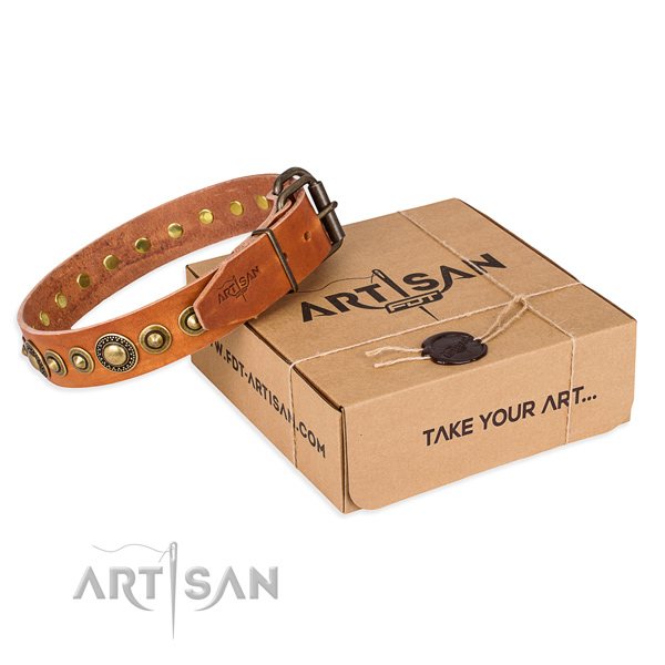 Flexible full grain natural leather dog collar handcrafted for basic training