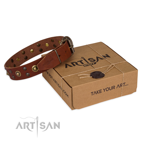 Corrosion proof buckle on genuine leather collar for your stylish pet