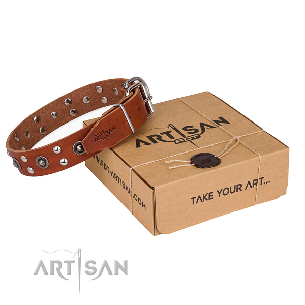 Reliable traditional buckle on full grain natural leather collar for your lovely pet