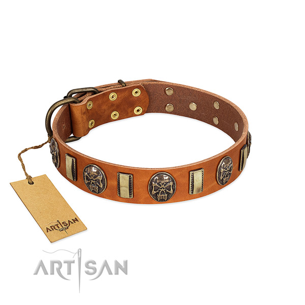 Significant genuine leather dog collar for handy use