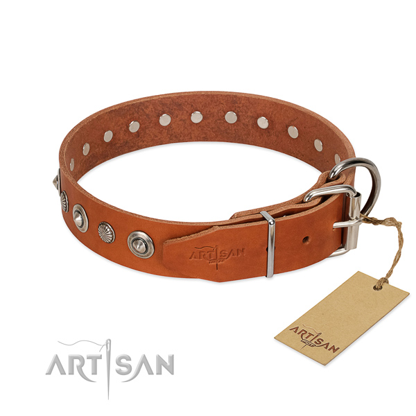Quality full grain genuine leather dog collar with unusual embellishments