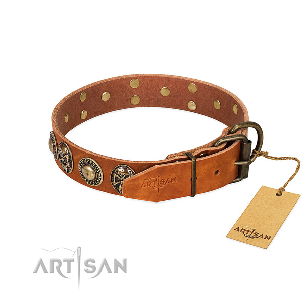 Strong buckle on daily walking dog collar