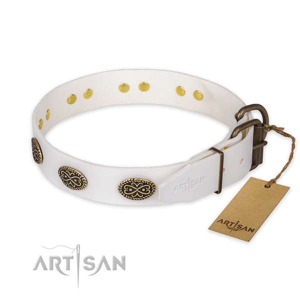 Reliable traditional buckle on full grain genuine leather collar for fancy walking your canine