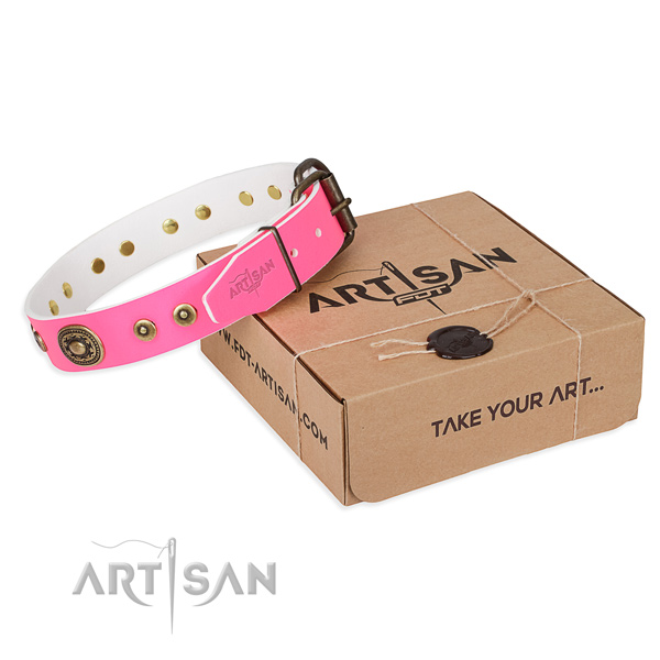 Full grain natural leather dog collar made of gentle to touch material with strong D-ring