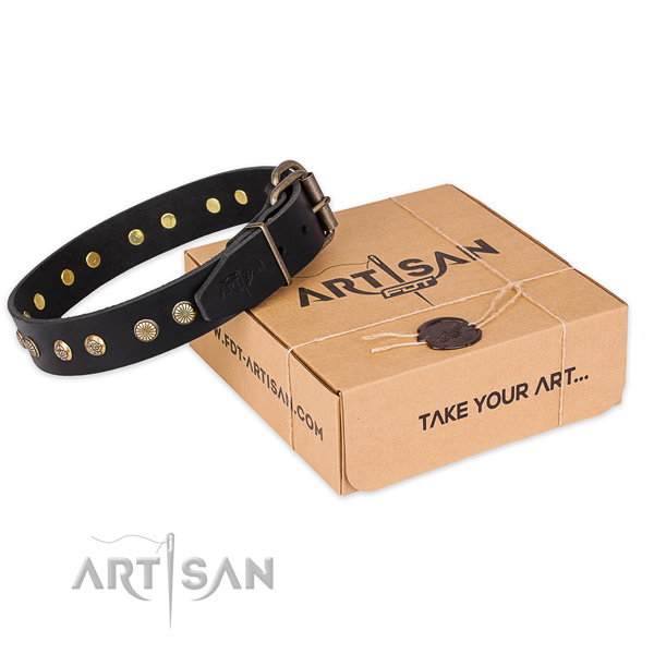 Corrosion proof D-ring on full grain natural leather collar for your stylish doggie