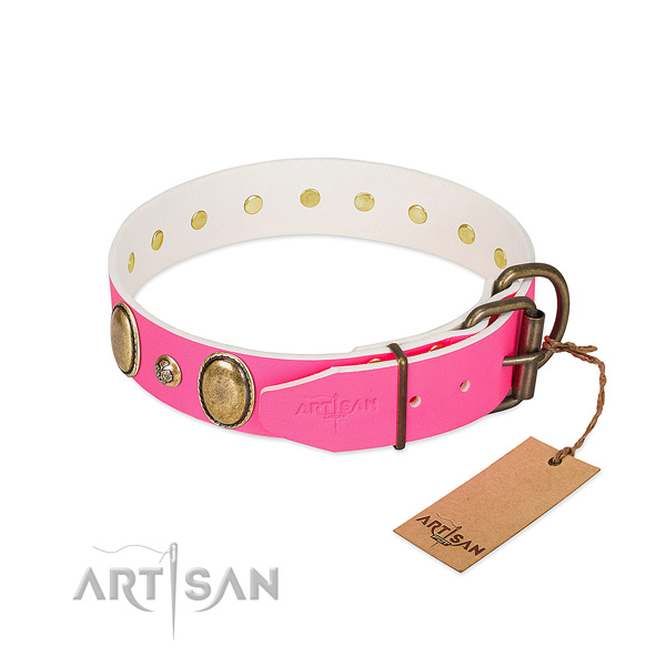 Everyday walking top notch natural genuine leather dog collar