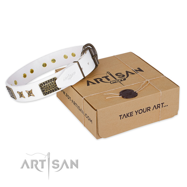 Durable hardware on full grain leather collar for your handsome dog