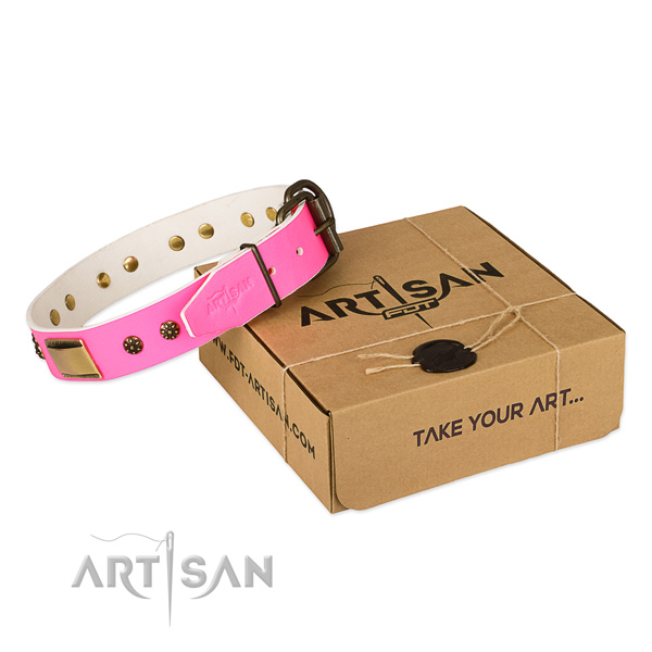 Inimitable leather collar for your attractive pet