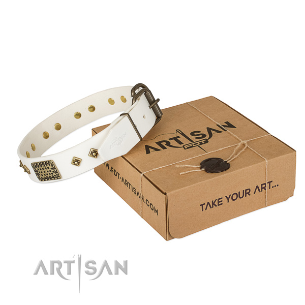 Adorned full grain natural leather collar for your attractive four-legged friend