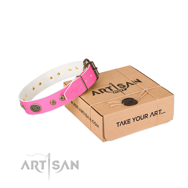 Durable adornments on leather dog collar for your canine