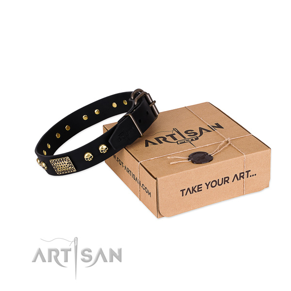 Durable adornments on dog collar for basic training