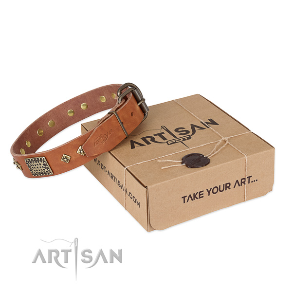 Stunning leather collar for your impressive canine