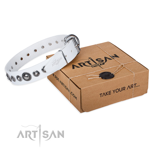 Full grain natural leather dog collar made of soft to touch material with reliable fittings